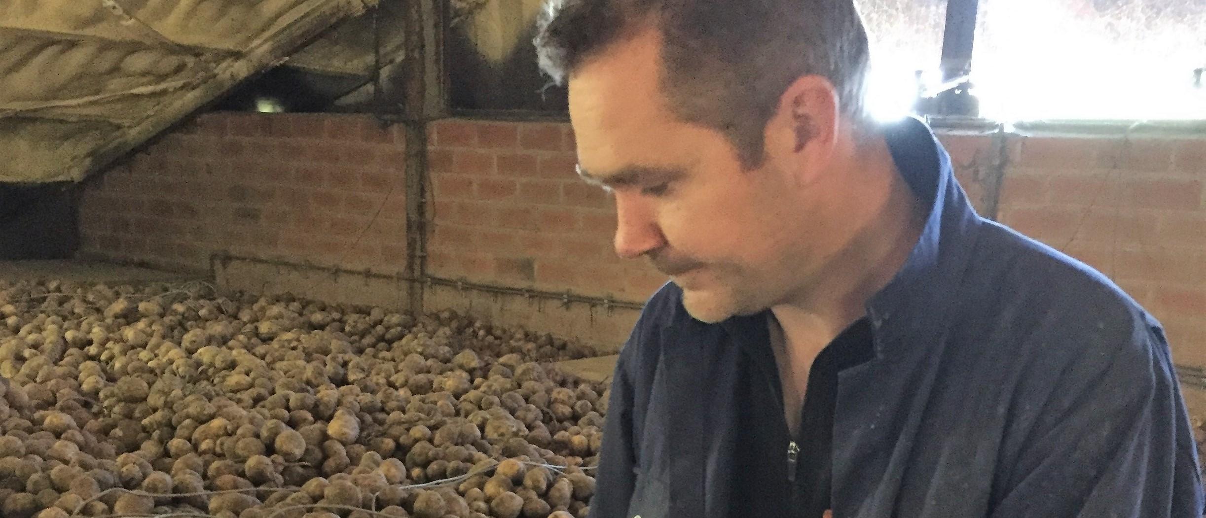 """""""Goed rendement door inzet Royal MH in aardappelen tegen doorwas"""""""